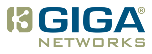 Enterprise IT/Network Security Solutions by GigaNetworks - Putting the «value» back into Value Added Reseller